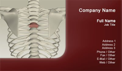 Chiropractor Spine Business Card Template